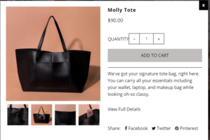 Summer and Rose Molly Tote in Black