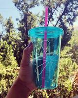 Turquoise Erin Condren Tumbler
