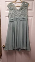 Size 16 Adrianna Papell dress