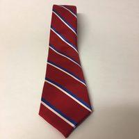 SprezzaBox Necktie