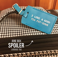 """I love a good TSA Pat down"" luggage tag"