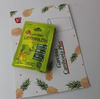 Alfa Vitamins Garcinia Cambogia Plus
