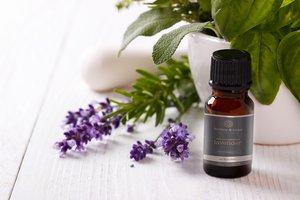 Sweet Basil essential oil