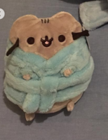 Pusheen Plush in Bath Robe (Fall 2018)