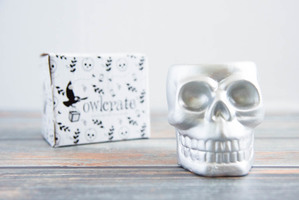 Owlcrate Skull Planter