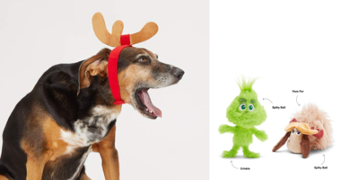 Young Grinch Squeaky Toy