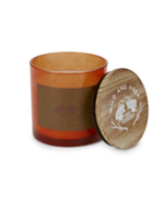 Wild & Free Bonfire Pumpkin Scented Candle