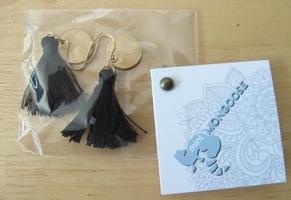 Classy Black Tassel Earrings