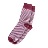 Maroon Stripe Socks, Gentleman of the North