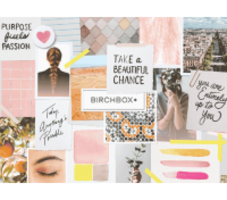 Birchbox January 2019 - Just the box
