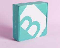 Entire January 2019 Bijoux Box