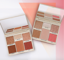 CoverFX All in One Perfector Face Palette