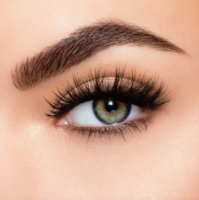 """Lilly Mink Lashes """"Gaia"""" Style"""