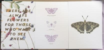 Art prints (A5 size, 3 prints)