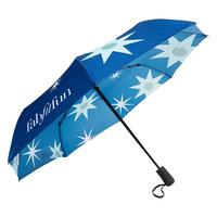 FabFitFun Winter 2019 Collectible Umbrella