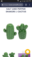 Sunnylife Cactus Salt & Pepper Shakers
