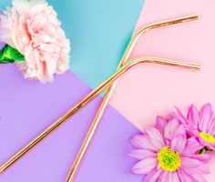 Copper Stainless Steel Straws