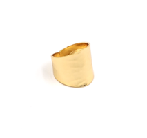 Nest Hammered Gold Adjustible Ring