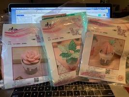 Felt Succulent Kits