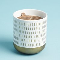 Green Market GP Co. Elderberry Woods Porcelain Splendor Candle