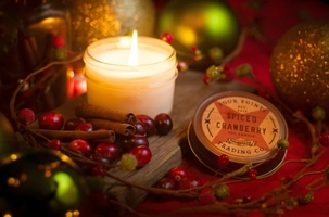 Four Points Trading Co. Soy Candle in Spiced Cranberry