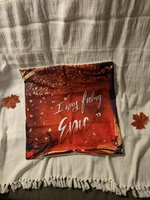 The Vampire Diaries Pillow Case