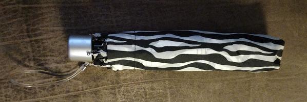 Zebra Print Umbrella