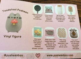 Pusheen Fall Box EXCEPT sweater