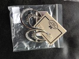 Catherine Stein silver double loop earrings $12