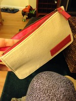 Birchbox makeup bag