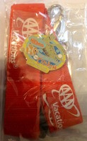 Walt Disney Lanyard and Collectable Pin