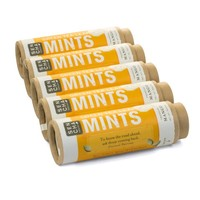 Sencha Green Tea Mints - Tropical Mango flavor