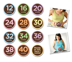 Sticky Bellies Maternity 12-40 Weeks Stickers