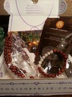 Yogi Surprise Jewelry Box (November)
