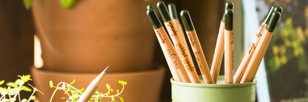 Sprout World Plantable Pencil