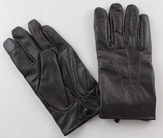 Gilded Age Lambskin Gloves