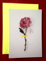 Flower card & envelope