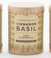 Modern sprout seed starter kit- cinnamon basil