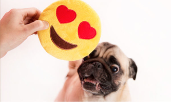 Valentine's Day Emoji Dog Toy