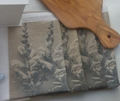 Stone Washed Linen (Lin Lavée) Printed Napkin Set