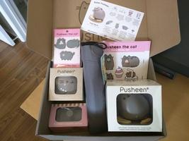 Pusheen Spring Box - Multiple items
