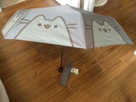 Pusheen Box exclusive umbrella